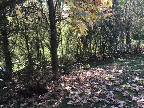 las acacias con camino el cajon