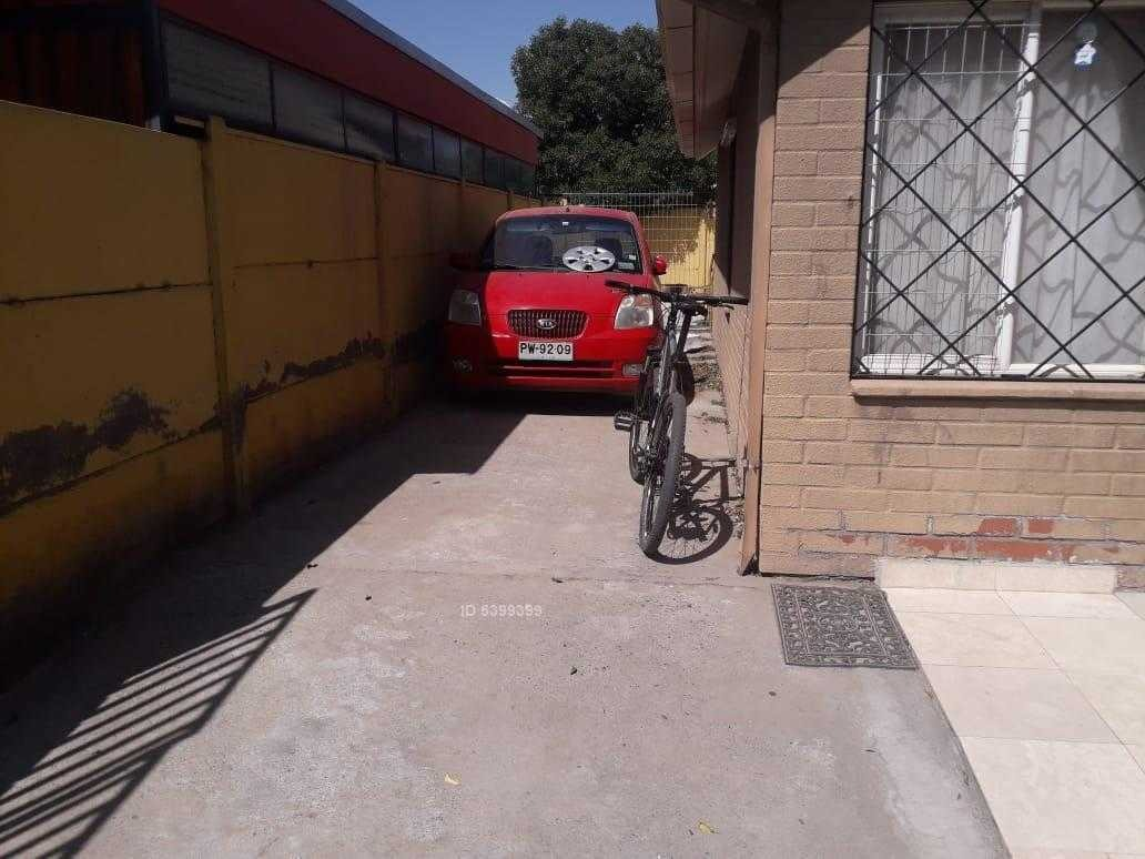 las camelias 2737