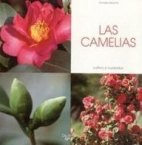 las camelias - cultivo y cuidados, daniela beretta, vecchi