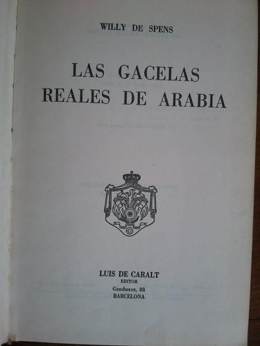 las gacelas reales de arabia. willy de spens