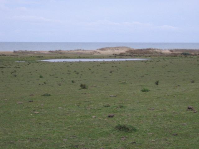 las garzas, 4 terrenos a media cuadra del mar