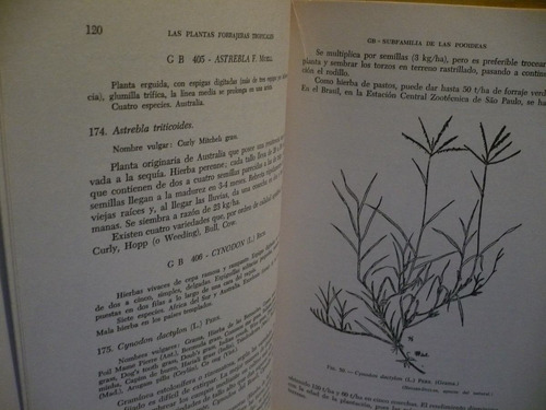 las plantas forrajeras tropicales - bernard havard-ducl