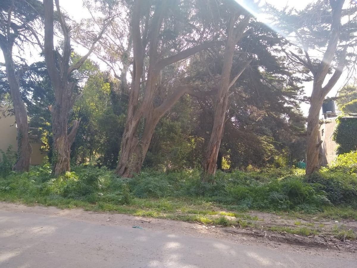 latorre prop. vende 2 hermosos lotes de 474 m2 cada uno - sobre av. gandhi - frente al parque camet..se venden juntos o separados