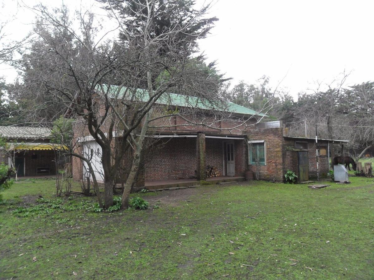 latorre prop vende casa quinta de 4 hectareas con casa principal, de huéspedes y caseros ..escucha propuestas..toma departamento..