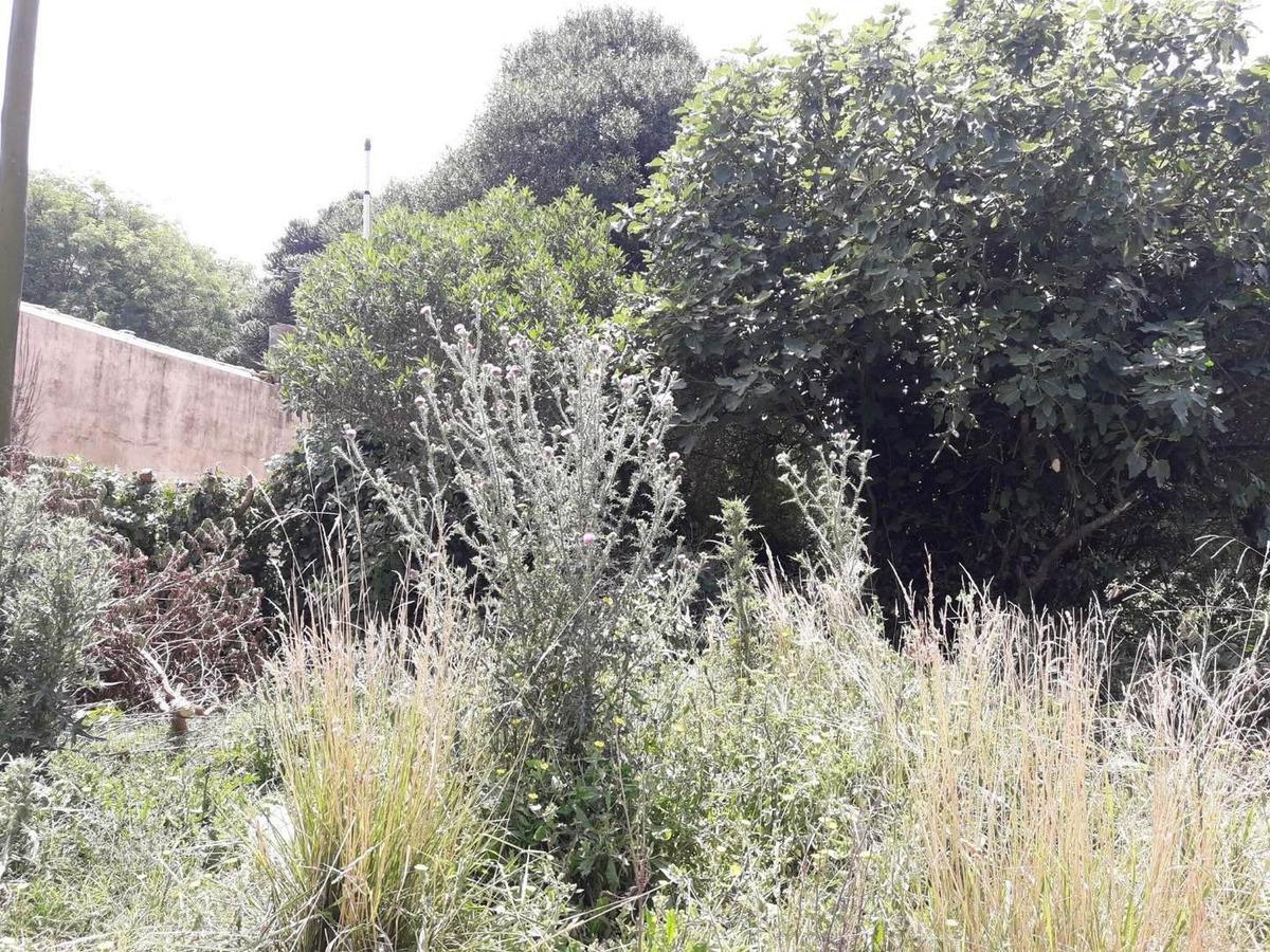 latorre prop. vende lote de 300 m2 en parque peña