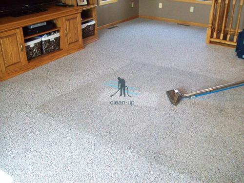 lavado alfombras - limpieza sillones, colchones y tapizados