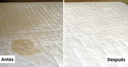 lavado de salas y alfombras y desinfectamos