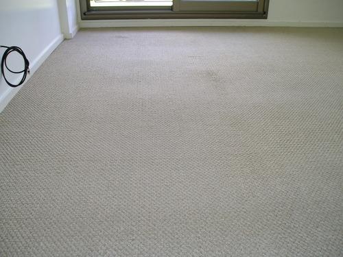 lavado - limpieza de alfombras y tapizados