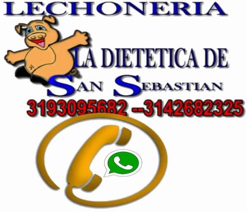 lechona-lechona dietetica-lechona a domicilio-lechona típica