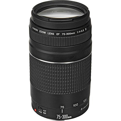 lente canon ef 75-300mm f/4.5-5.6 iii.  nuevo. r y m