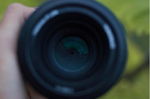lente yongnuo 50mm f1. 8 para nikon