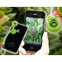 Ojo De Pez / Fish Eye - Smartphone, Iphone, Tablet