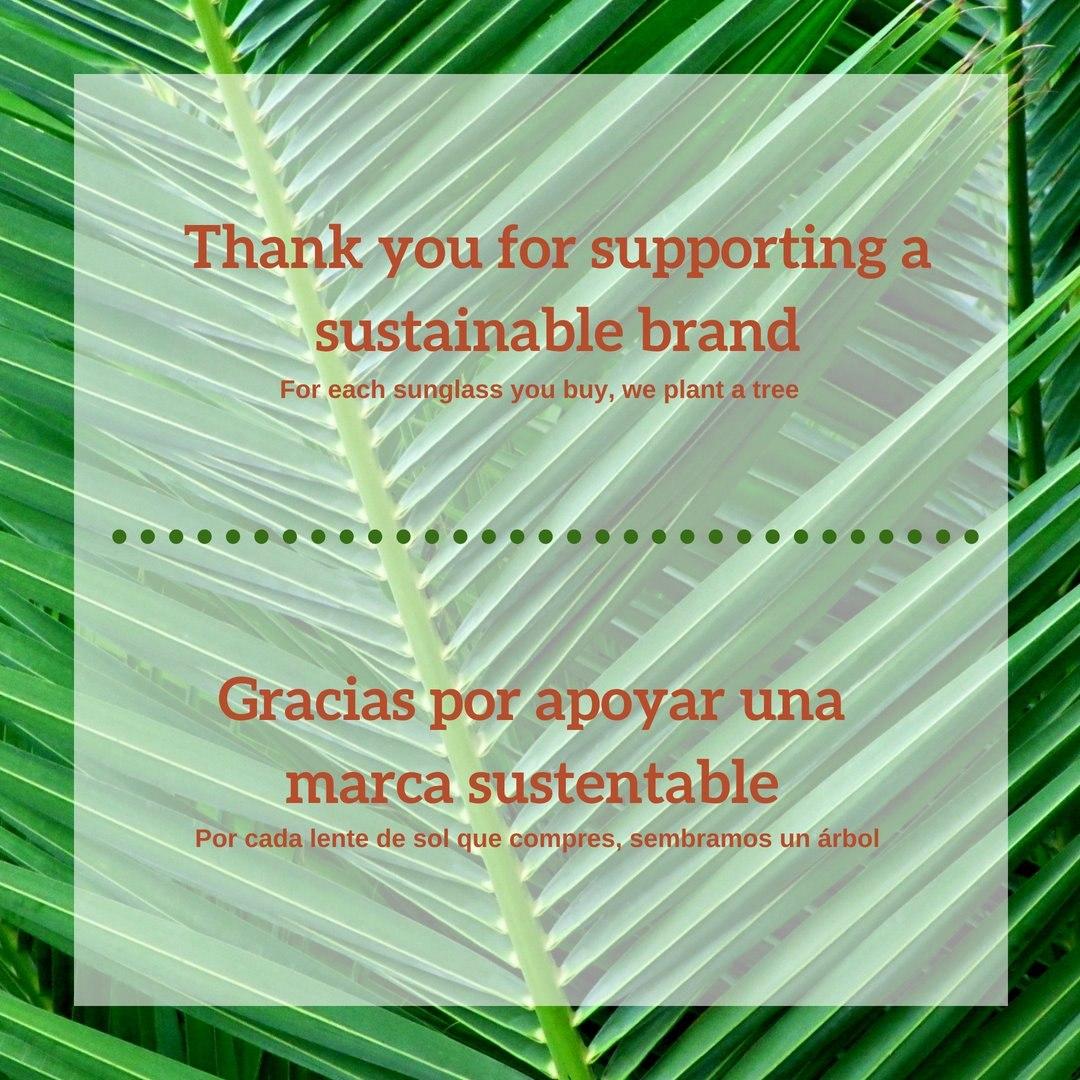 89b0c2ed01 lentes de sol madera bamboo rojos palmtree uv400 ecologico. 9 Fotos