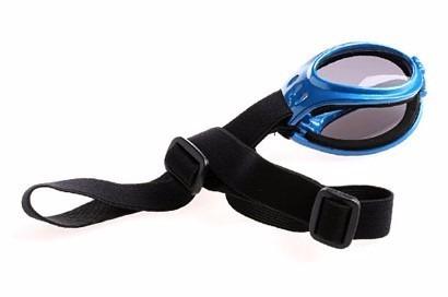 lentes de sol protección uv para su perro