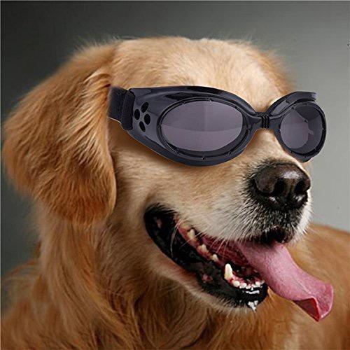 gafas para perro mercadolibre