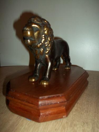 leon antiguo de bronce maciso-22x15 b, de cedro-25x13