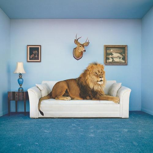 leon en casa paleta azul marco rompecabezas 250p clementoni