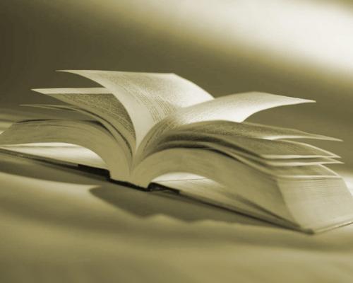 libreriaweb revista libro elegido nro9