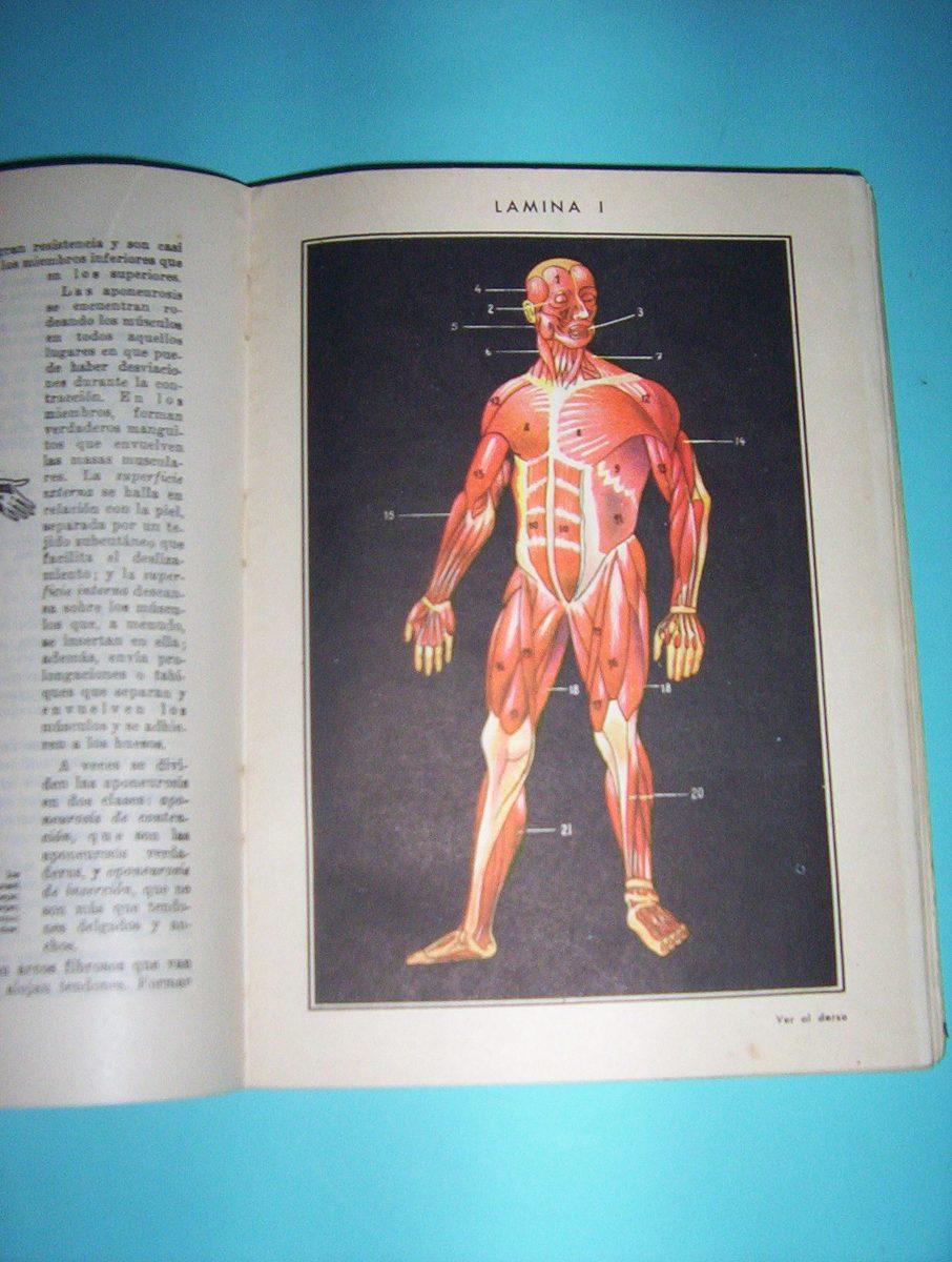 Libro-a. Casanave -anatomia Y Fisiologia -tercer Año-arm- - $ 120,00 ...