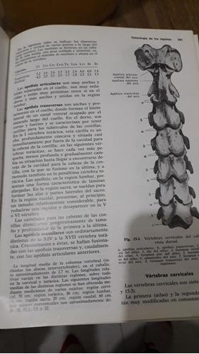 libro anatomia de los animales domesticos 2 tomos