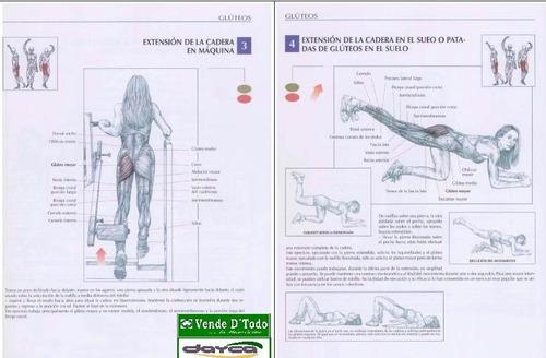 libro  anatomia de los  movimientos musculares fisioterapia