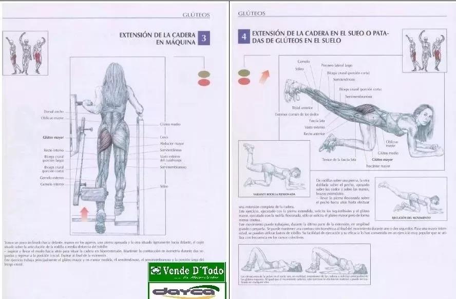 Libro Anatomia De Los Movimientos Musculares Fisioterapia - $ 250.00 ...