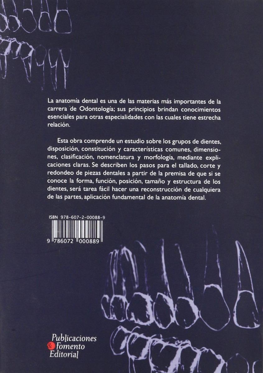 Lujo Ruedas Anatomía Dental Friso - Anatomía de Las Imágenesdel ...