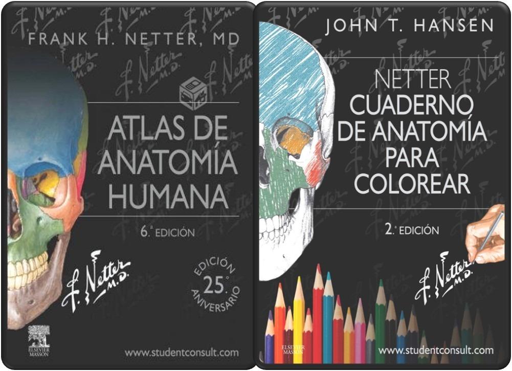 Libro Anatomía Humana 6ta Ed. Netter + Cuaderno De Dibujo - Bs ...