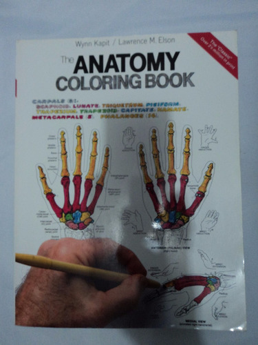 libro anatomy coloring book anatomia