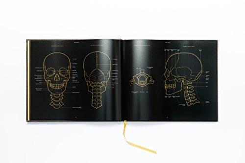libro anatomy in black - nuevo