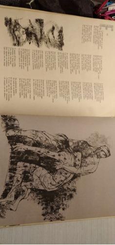 libro antiguo martín fierro