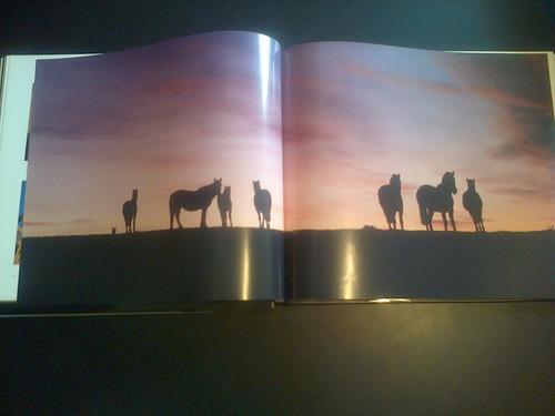 libro arte aldo sessa patagonia el lejano sur fotografia