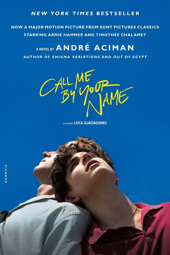 libro call me by your name, meses sin intereses