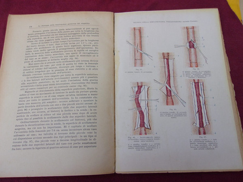 libro chirujia del dolore en italiano por el prof. scalone