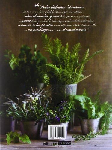 libro cocinero recolector y las plantas silvestres, el