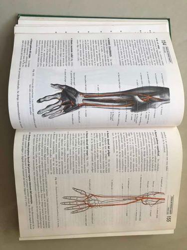 libro de anatomía h. rouviere