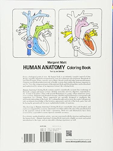 Libro De Colorear De Anatomía Humana (libros De Ciencia Para ...