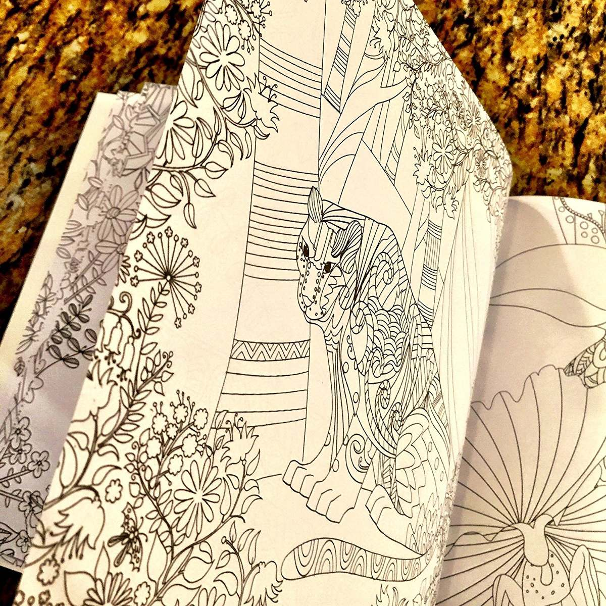 Excepcional Titánico Libro Para Colorear Ideas - Enmarcado Para ...