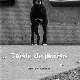 Libro De Fotografía Tarde De Perros De Martin Martines