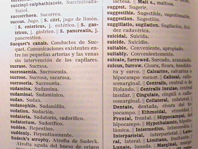 Libro Diccionario Ingles Español Inglés Dictionary English