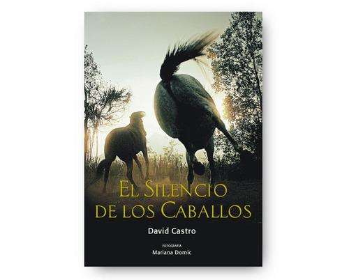 libro el silencio de los caballos - david castro concaballos