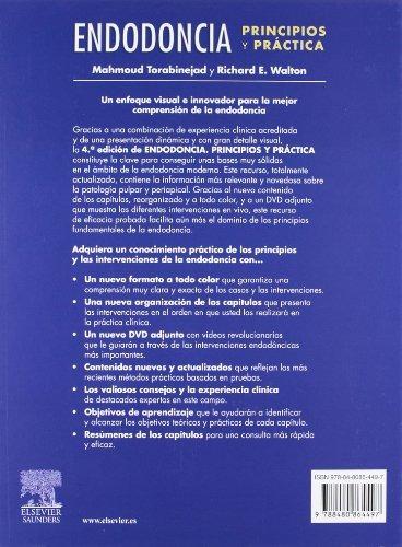 libro endodoncia principios y practica c/dvd rom - nuevo