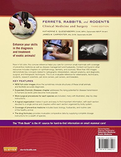 libro ferrets, rabbits, and rodents: clinical medicine and s