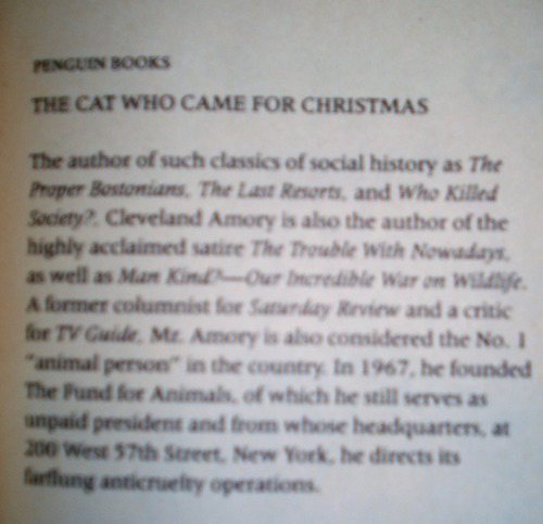 libro ficcion ingles amory gato animal nueva york felino