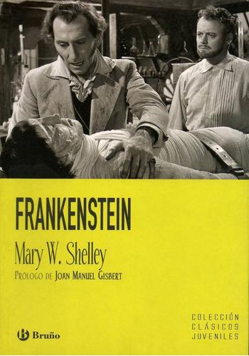 libro: frankenstein