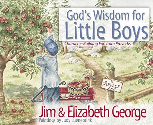 libro god's wisdom for little boys: character-building fun