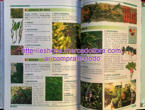 libro hierbas aromáticas ed clasa