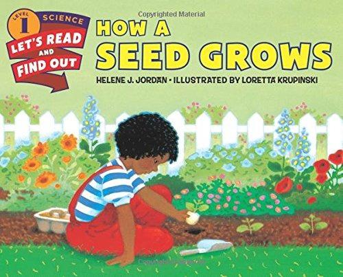 libro how a seed grows - nuevo