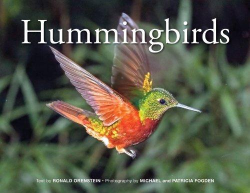 libro hummingbirds - nuevo