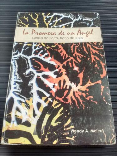 libro  la promesa de un ángel  autor wendy a. molero